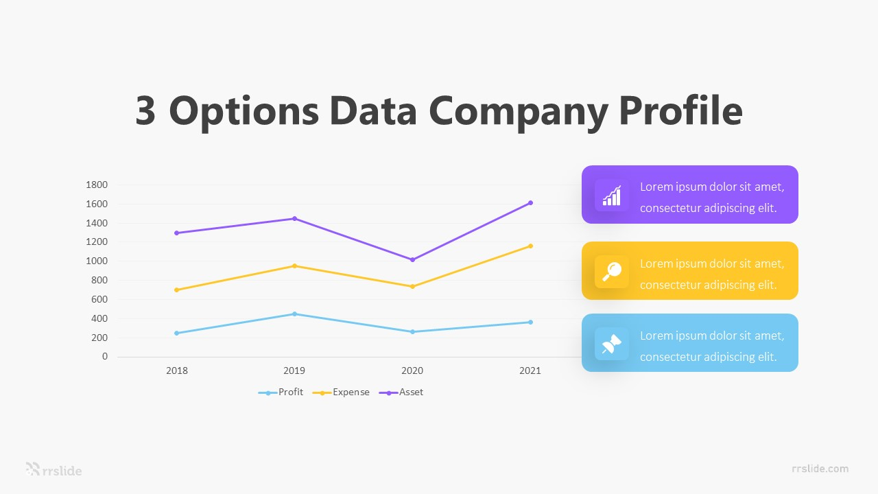 3 Options Company Profile Infographic Template