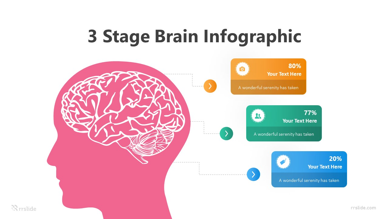 3 Stage Brain Infographic Template