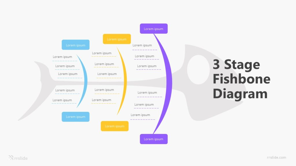 3 Stage Fishbone Diagram Infographic Template