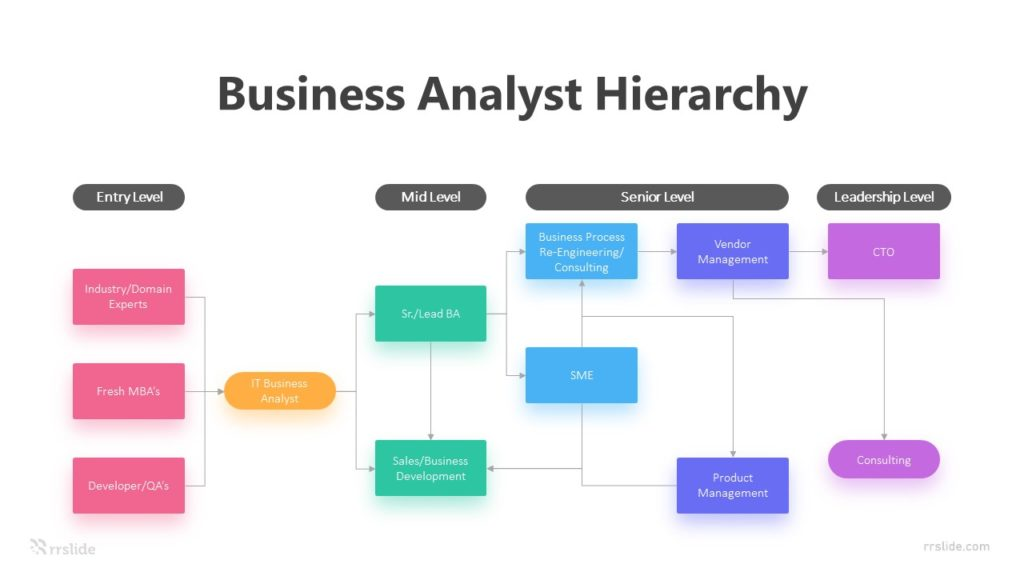 6 Business Analyst Hierarchy Infographic Template