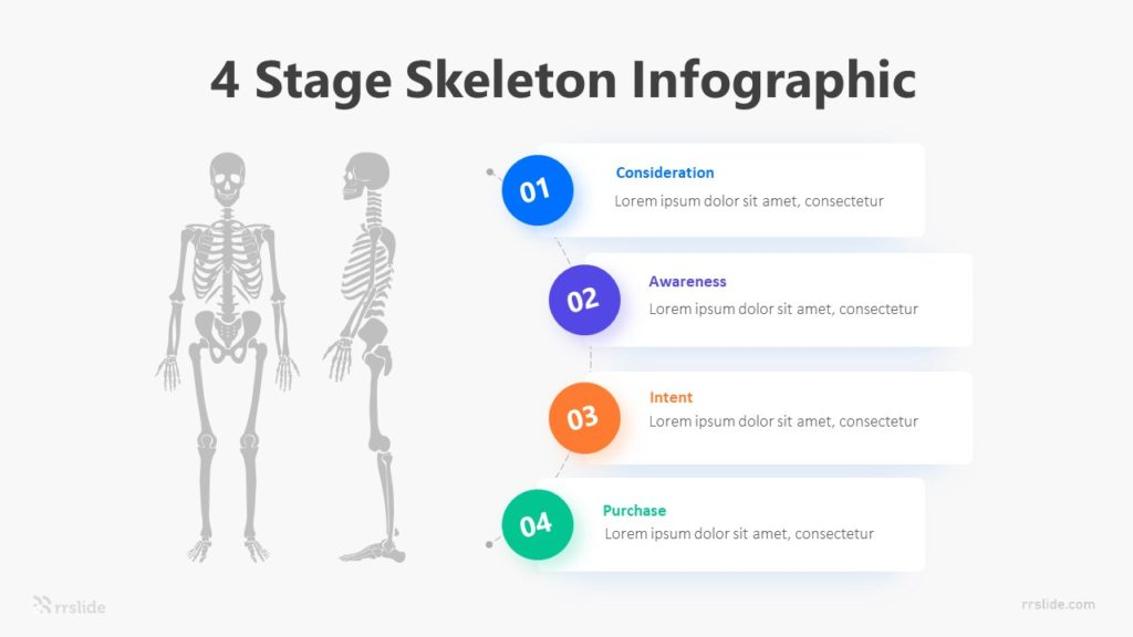 4 Stage Skeleton Infographic Template