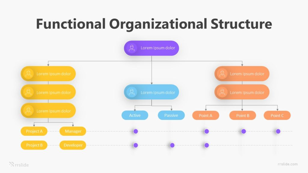 Functional Organizational Structure Infographic Template