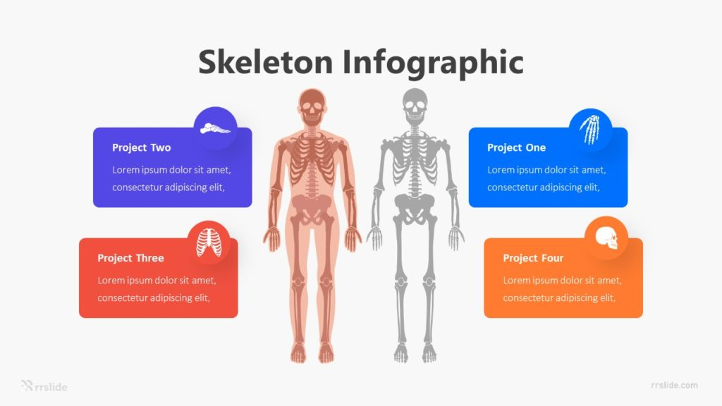 Skeleton Infographic Template