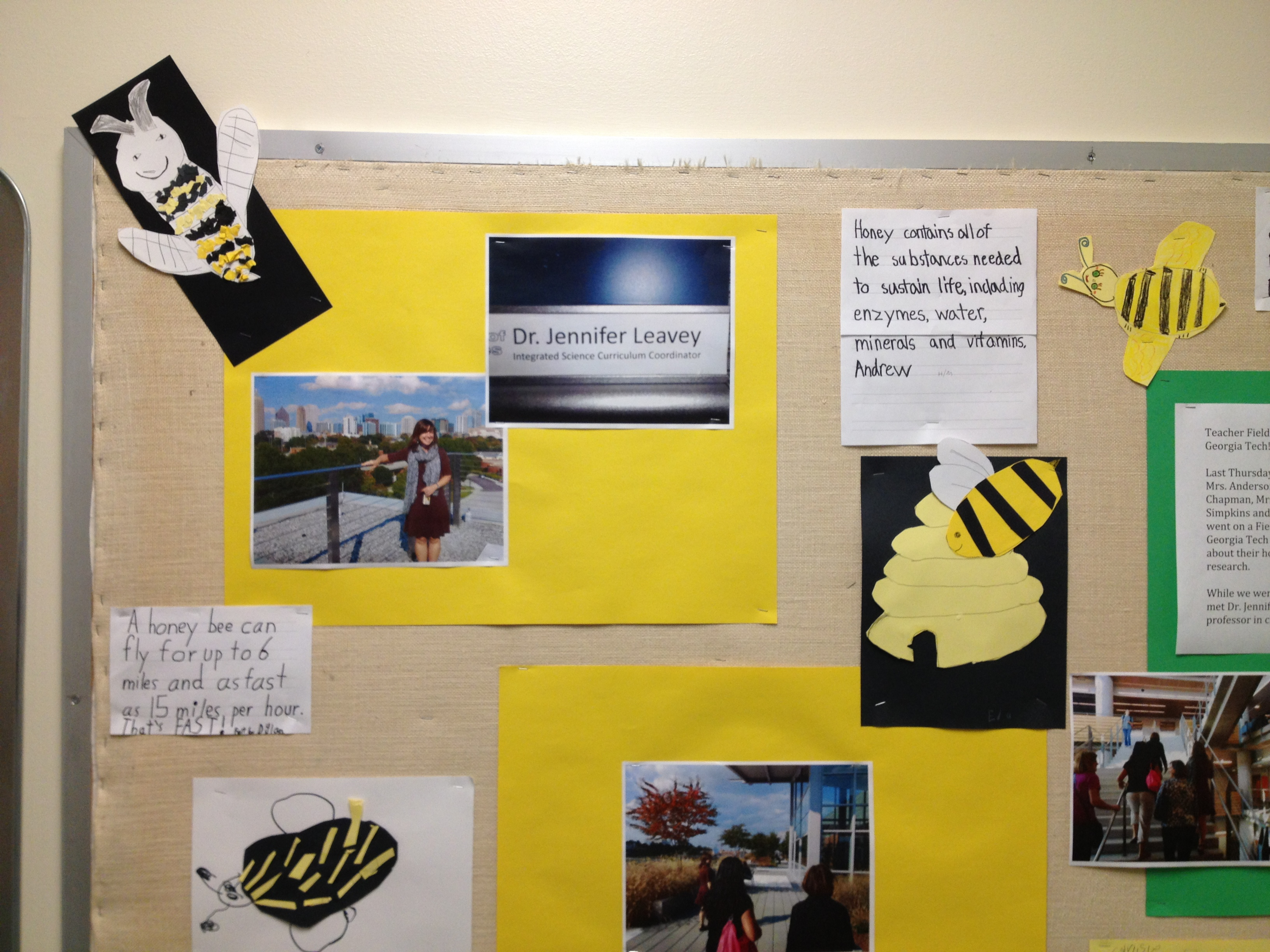 Learning For Life Pbl In The Westminster Lower School