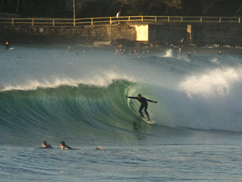 Well attended the entire length of Manly beach by 0700, but not without reason.