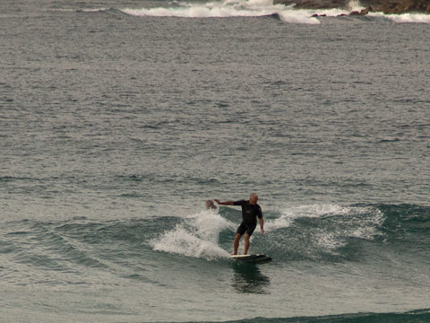 Really needed a longboard up the Queenscliff end of the beach around 0900.