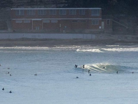 North Narrabeen busy