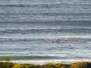 Well populated at Dee Why @0700