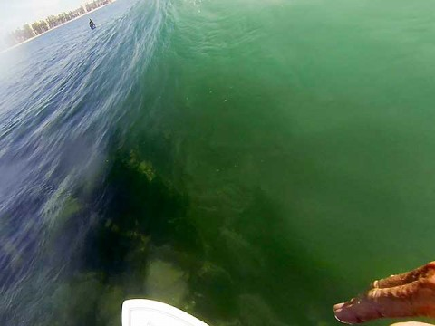 surfing gopro fairy bower manly