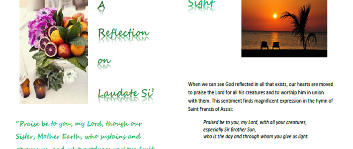 screen shot of Laudato Si' prayer resource
