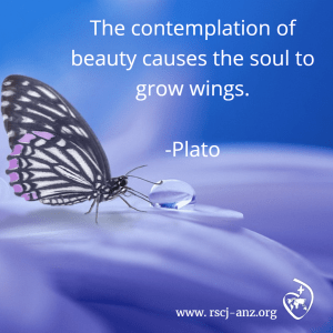 Contemplation of nature causes the soul to grow wings.