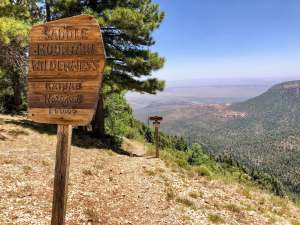 saddle mountain wilderness sign