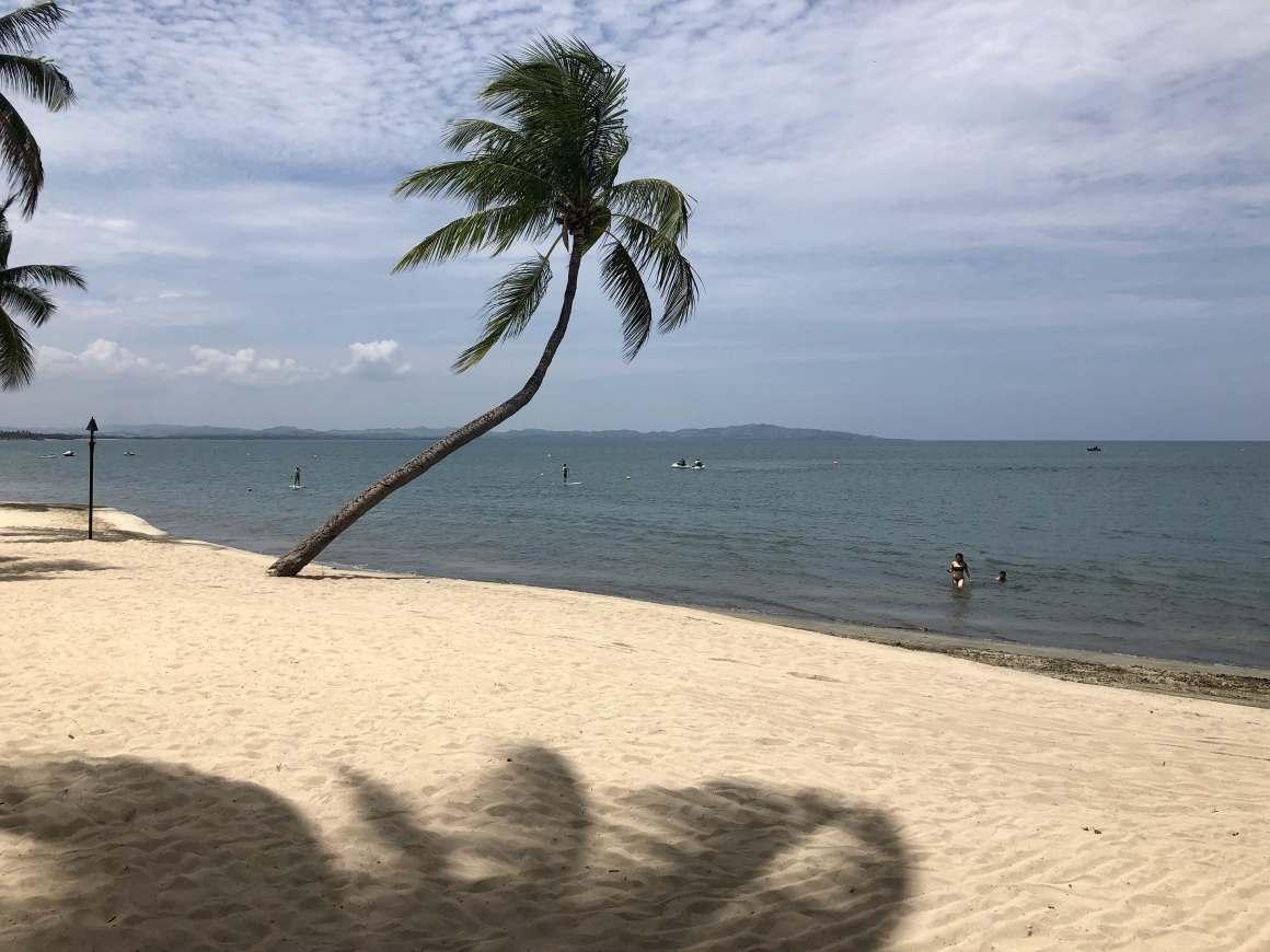 beach from resort