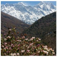 The Riddle of the Tsangpo Gorge - part two