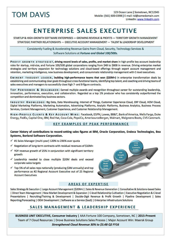 technology sales resume sample