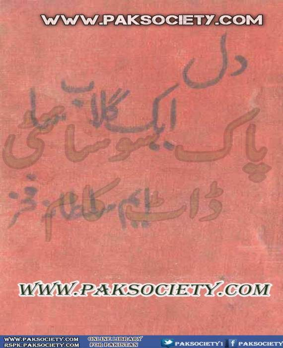 Dil Aik Gulab Sa By M Sultana Fakhar