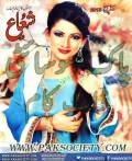 Shuaa Digest March 2015