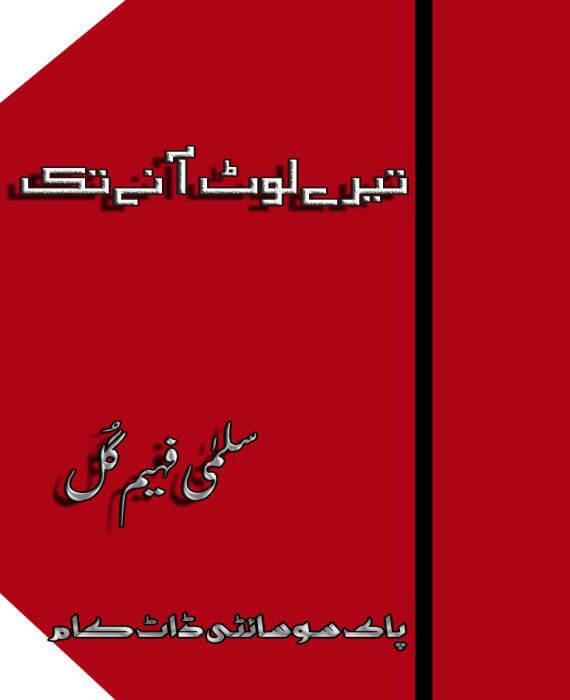 Tere Lot Aane Tak By Salma Faheem Gull