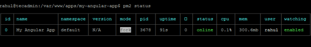 Check PM2 Status of Angular Application