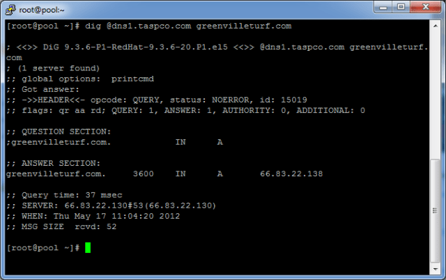 How to check DNS records on a specific DNS server using dig and linux