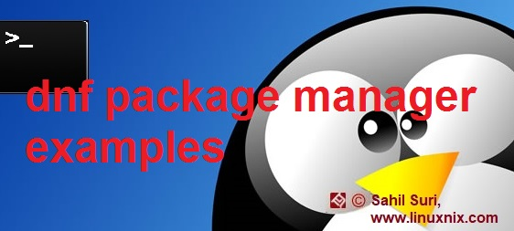 dnf package manager examples
