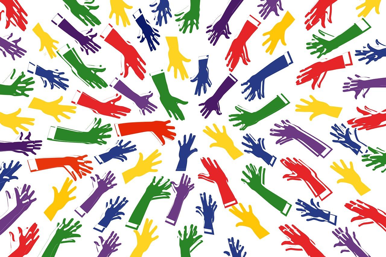inclusion empresas