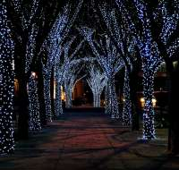 Christmas Lights & Merry Events 2011! | RSVP Design Services
