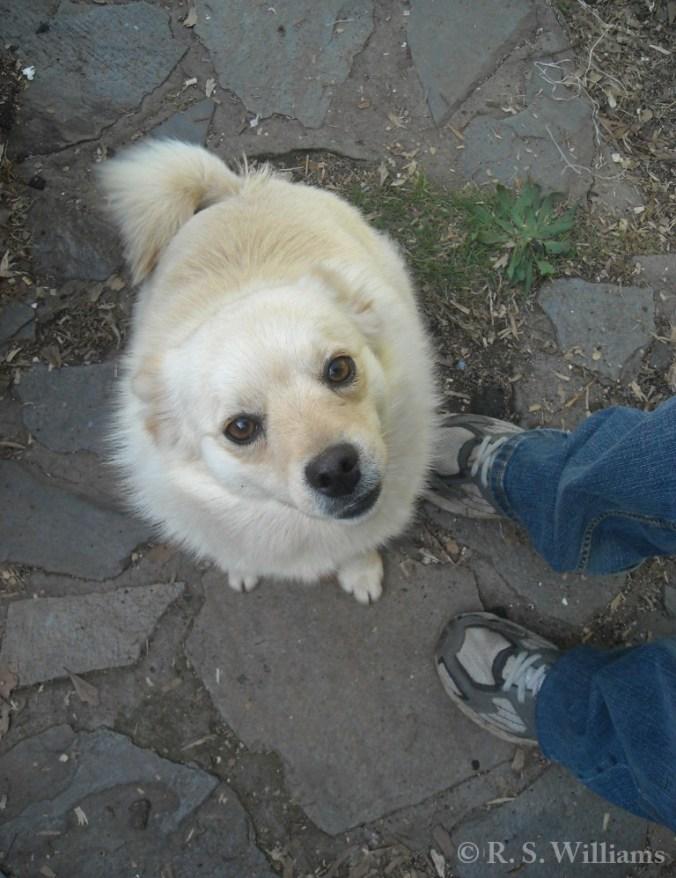 Please, Mama? (1 April 2011)