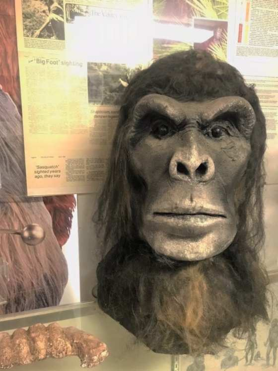 A bust of Bigfoot