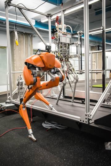 El laboratorio incluye varias pistas y una cinta de correr de cuatro metros de largo capaz de alcanzar velocidades de más de 60 kilómetros por hora para probar los andares de carrera robótica de alta velocidad.