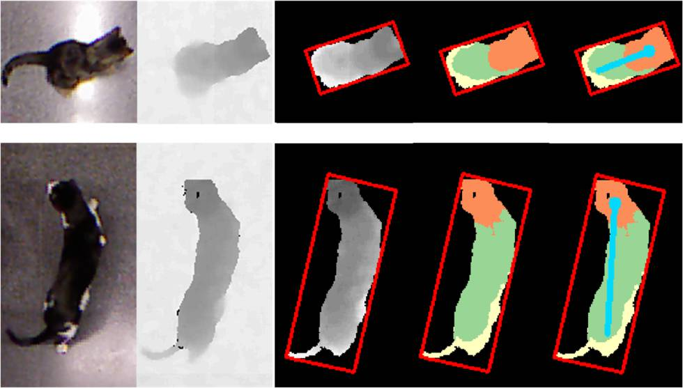 Software de detección de posturas desarrollado por Pons.