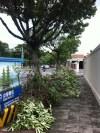 Auch vor dem neben RTI gelegenen American Club liegt der gannze Gehweg voller Baumreste