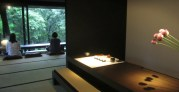 Shi-Yang Teehaus
