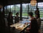 Teemeister Herr Yang brüht für die Gruppe Tee