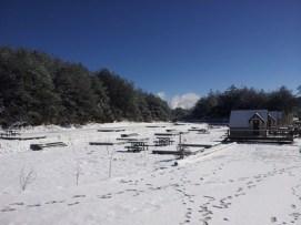 neige partout sur les monts