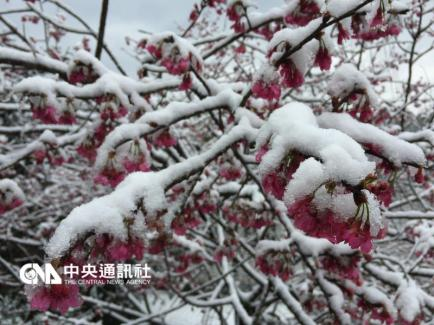 Neige à Yangminshan
