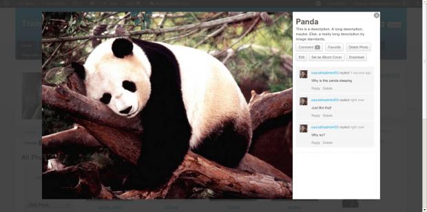 BuddyPress Media 2.7 Slideshow Preview