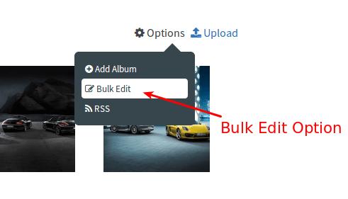 bulk edit option
