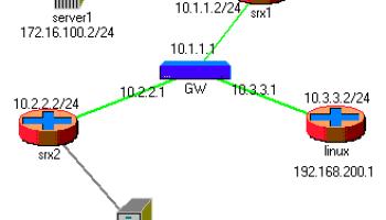 GRE tunnel configuration in SRX | RtoDto net