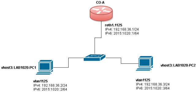 lab1020-arp-garp-ipv6-nd-topology