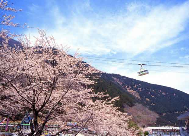 Бэппу — термальная столица Японии
