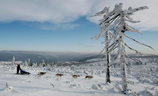 Чем заняться в Чехии в январе-феврале?