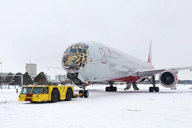 Русский самолет украсили мордой дальневосточного леопарда