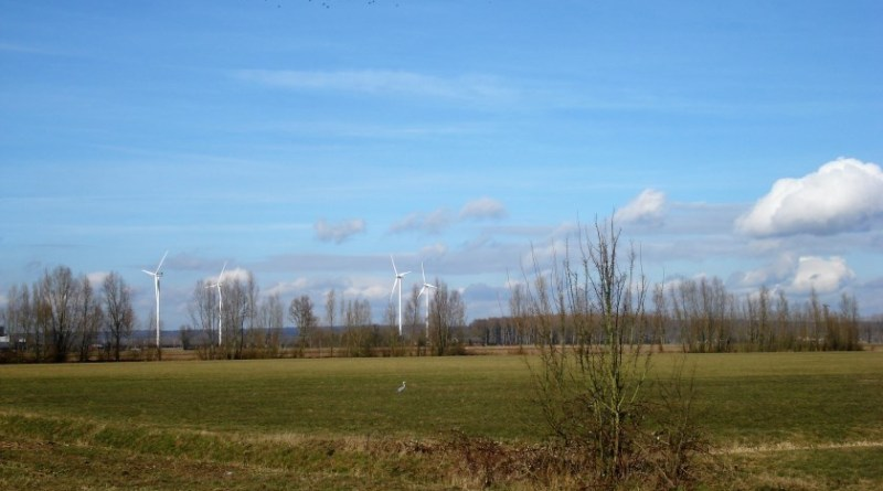 windmolens winterswijk