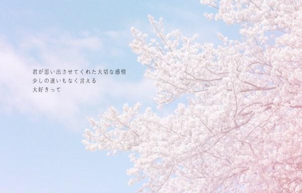 想い//桜