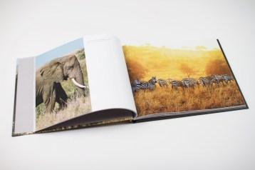 Tanzania by Michael MacDonald