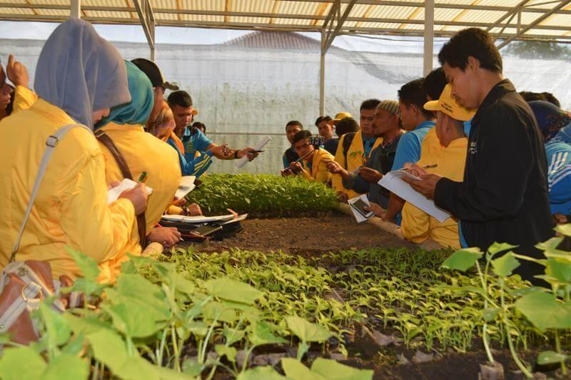kegiatan mahasiswa pertanian penelitian