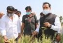 बड़ोनी क्षेत्र में गृहमंत्री ने ओला वृष्टि से नुकसान का लिया जायजा लिया