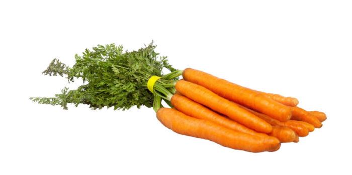 Fabricante de Gomas Elásticas Hortofrutícolas Bandex