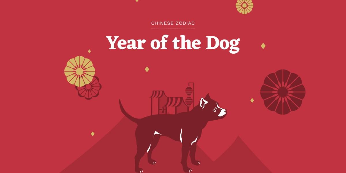 Previsões para o Ano do Cão